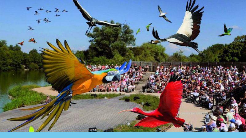 Le Parc des Oiseaux de Villars les Dombes